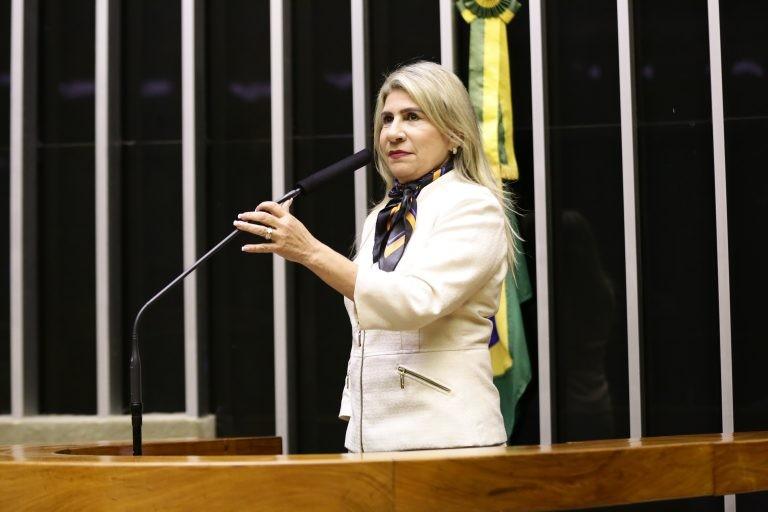 Edna Henrique quer garantir recursos que atendam aos deficientes visuais - (Foto: Arquivo/Câmara dos Deputados)